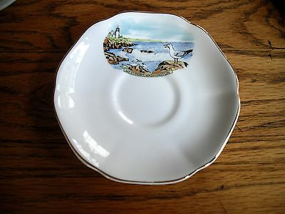 Vintage Royal Grafton Seagull - Lighthouse England Fine Bone China 5 12 Saucer