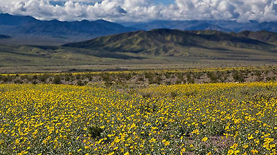 2 Acres of Vacant Land in Golden Valley Mohave County Arizona
