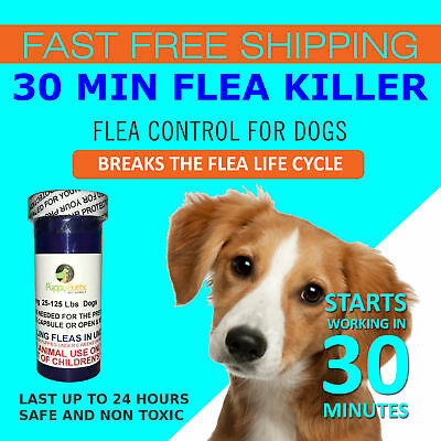 50 Tablets Flea Killer DOGS 25-125 Lbs- 57 Mg Quick Results Fast Shipping