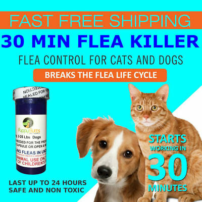 50 CAPSULES Flea Killer For CATS and DOGS 2-25 Lbs- 12 Mg Quick Results