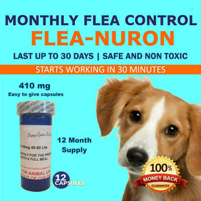 1 Year Supply MONTHLY Flea Control For Dogs 45-90 Lbs- 410 Mg PB 12 Capsules