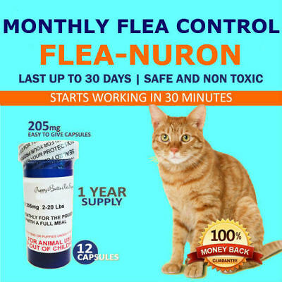 1 Year Supply MONTHLY Flea Control for CATS 2-20 Lbs- 205 Mg 12 Capsules PB