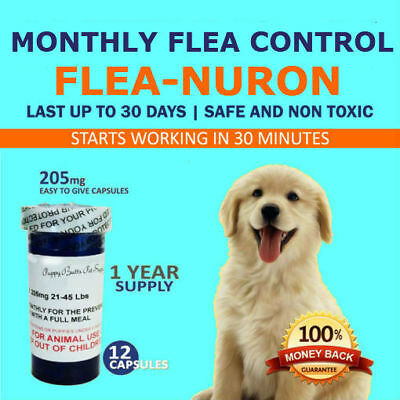 1 Year Supply MONTHLY Flea Control For Dogs 21-45 Lbs- 12 Capsules 205 Mg PB