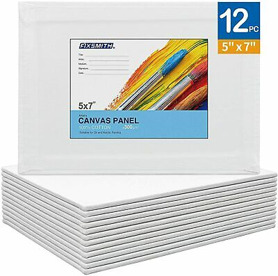 Artist Painting Canvas PanelsCanvas Boards12 Pack100 CottonPrimedAcid Free
