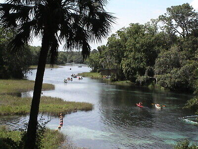 FLORIDA LAND in DUNNELLON NEAR OCALA and CRYSTAL RIVER