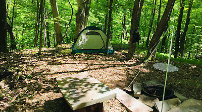 Delancey NY 2 nts - up to four guests Dirt Road Camp  310 value