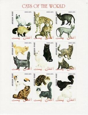 Cats on Stamps - 9 Stamp Mint Sheet MNH - 1C-021