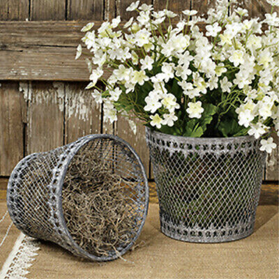 New French Country Shabby Chic Victorian Farmhouse 2 CHICKEN WIRE BASKET Planter