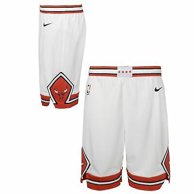 Nike NBA Youth Boys 8-20 Chicago Bulls Swingman Association Shorts