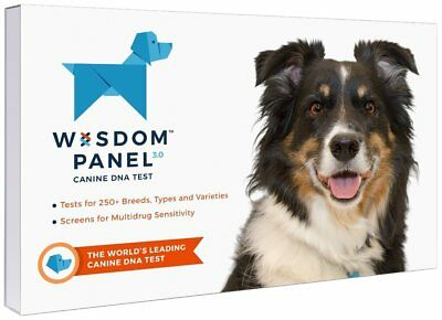 Wisdom Panel 3-0 Breed Identification DNA Test Kit Other Dog Health Care Pet