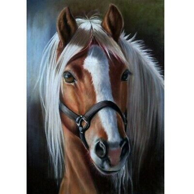 Horse Full Drill DIY 5D Diamond Painting Kits Art Embroidery Wall Decors Gifts