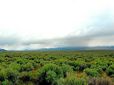 19 ACRE ELKO NEVADA RANCH  PERFECT BUG OUTVIRUS HIDEOUT  CASH SALE NO RESERVE