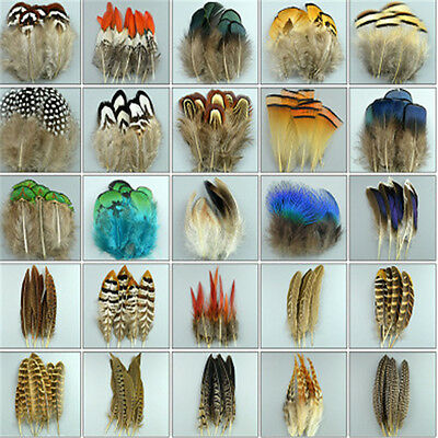 Wholesale 10-100PCS beautiful pheasant tail - peacock feathers 3-20cm2-8inches