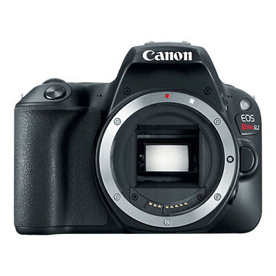 Canon EOS Rebel SL2 24-2MP Digital SLR Camera Body