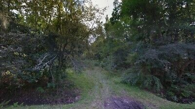 Florida Nice Size 100x100  lot-  Nice quiet dead end street Mobiles Possible