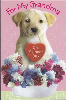 Mothers Day Greeting Card FOR MY GRANDMA