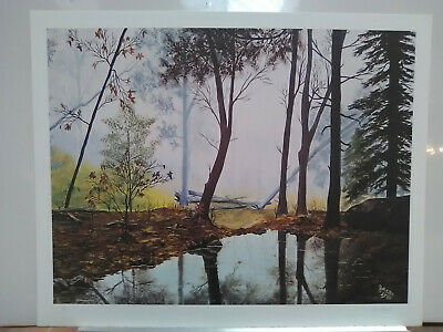 POND IN THE WOODS autumn 25x21 SN signed print art never framed