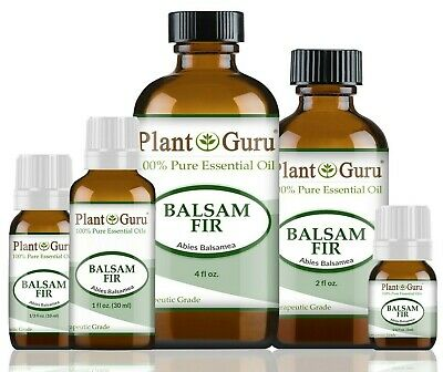 Balsam Fir Essential Oil 100 Pure Therapeutic Grade Cold Pressed Abies Balsamea