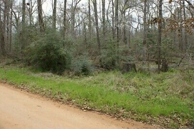 0-40 Ac RVCamp or Build Near Houston TX - NO RESERVE