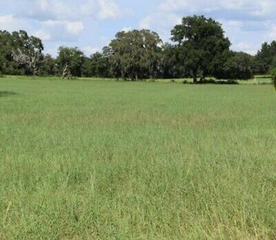 Florida Hernando County 23-5 acres LAKEFRONT