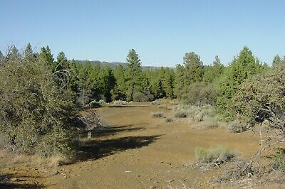 Land Klamath Falls  2-27 Acres Wooded Sprague River Klamath Forest Estates