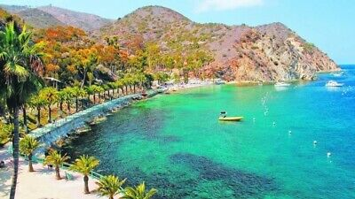 Catalina Tours Gift Certificate For 190