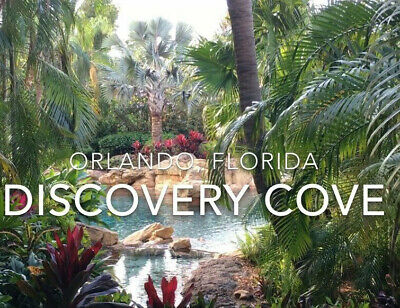 DISCOVERY COVE DAY RESORT TICKET SAVINGS PROMO DISCOUNT INFO TOOL