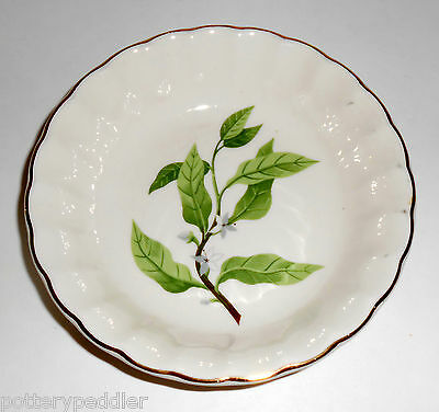 W- S- George Pottery China B8760 Floral Fruit Bowl MINT