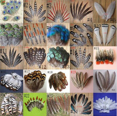 Wholesale 10-100PCS beautiful 2-20cm2-8inches Pheasant Tail - Peacock Feathers