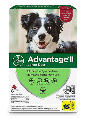 Bayer Advantage II Flea and Lice Treatment for Large Dogs 21-55 lb 6 doses