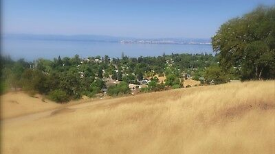 Lake View Land Liquidation - True Auction with No Reserve