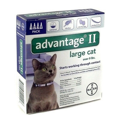 Bayer Advantage II Flea Treatment for Large Cats Over 9 lbs 4 Doses