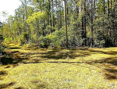 11-5 Acres - Forest View Road DeLand - Lake County Florida - No Reserve