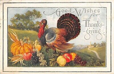 Colorful Turkey With Pumpkin Grapes Corn - Apples-Old Thanksgiving Postcard