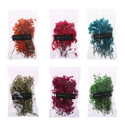 Artificial Decorations Crystal Grass Floral Plants Dried Flowers Babysbreath