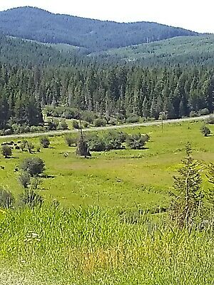 19-77 Acres of Land in beautiful land of the free Emida Idaho simple living