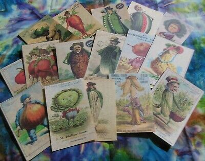 Set of 16 LARGE Seed Pack Victorian Anthropomorphic images —Set  1 seed packets