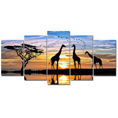 No Frame Modern Canvas Print Picture Poster Sunset Landscape Giraffe Home Decor