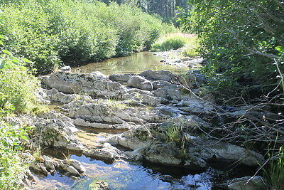 Jamison Creek 20 Acre Placer Gold Mining Claims Equipment Land Johnsville CA
