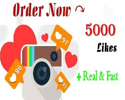 5000 Instagram-Post-Likes  High Quality Safe - Instant  Social Media Services