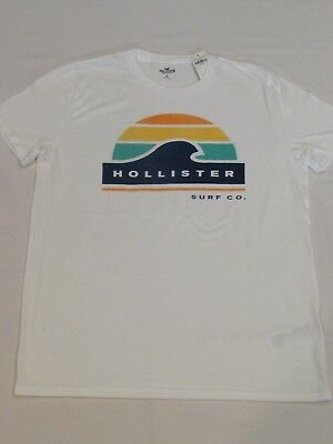 NEW MEN'S HOLLISTER CO- SHORT SLEEVE GRAPHIC T-SHIRT WHITE PICK A SIZE