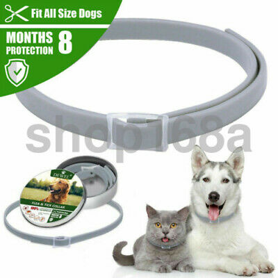 Dewel Adjustable Flea - Tick Collar Anti Insect Pet Cat Dogs 8 Month Protection