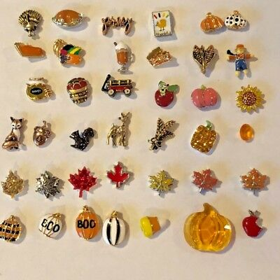 Origami Owl Charms 2019 Autumn Harvest Fall Thanksgiving Ship Free Buy 4 Save 2