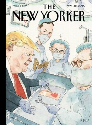 THE NEW YORKER MAGAZINE-MAY 25 2020-LOCKED UP IN LOCKDOWN-Brand New