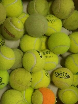 200 or 400 used tennis balls - LOW COST DOT DOGGIE BALLS with bounce FREE SHIP