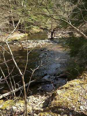 BACK ON MARKET - JUST REDUCED Poconos 3-84 acre Creekfront Property with Permits
