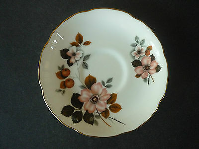 Royal Grafton Wild Flower Teacup saucer Fine English China
