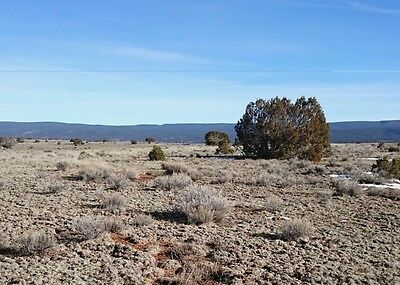 20 Acres of Secluded Land in Cibola County New Mexico