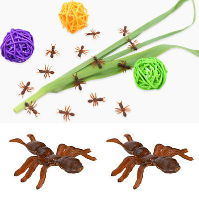 10STK PLASTIC ANTS FIGURE JUNGLE INSECT KIDS TOY HALLOWEEN PARTY FILLER