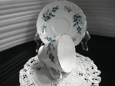 TEA CUP - SAUCER Colclough Pattern 8242  Made In England C1